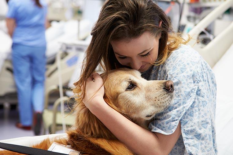 Regional Cancer Center Caring Canines Visits